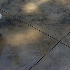 Decorative-concrete-patio-Concrete-Excellence-Burnsville-MN